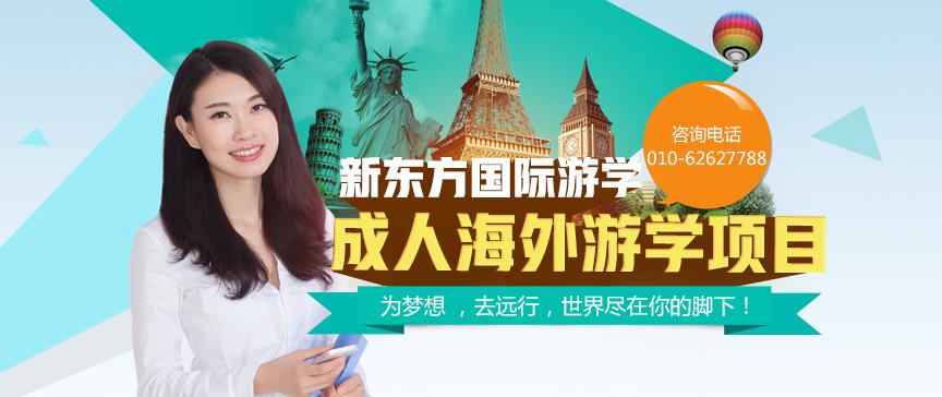 成人海外游学
